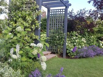 Garden Planning and Planting This Autumn